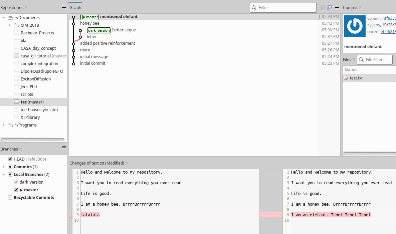 Figs/tutorialPart2/branchbeforemerge.png